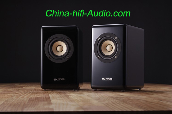 Aune X3 Full Frequency loudspeakers desktop mini speakers a pair