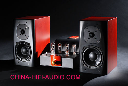 Best Match! Bewitch Music Angel hifi A84 amp + S8 speakers