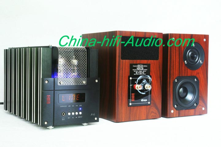 Best Match! QINPU A-6 intergrated AMP + VF-3.2 speakers