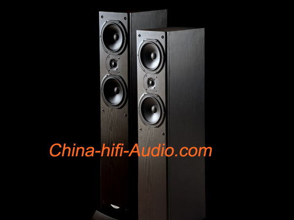 JungSon GF-No.1 Floor standing loudspeakers hifi speakers
