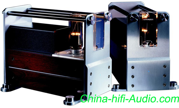 Opera Cyber 211/845 vacuum tube Dual Mono power amplifier Pair