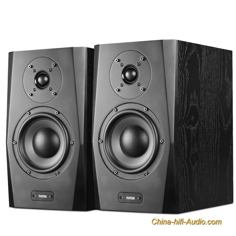 PAIYON A61 active monitor speakers hi fi Bluetooth 2.0 USB coaxial audio
