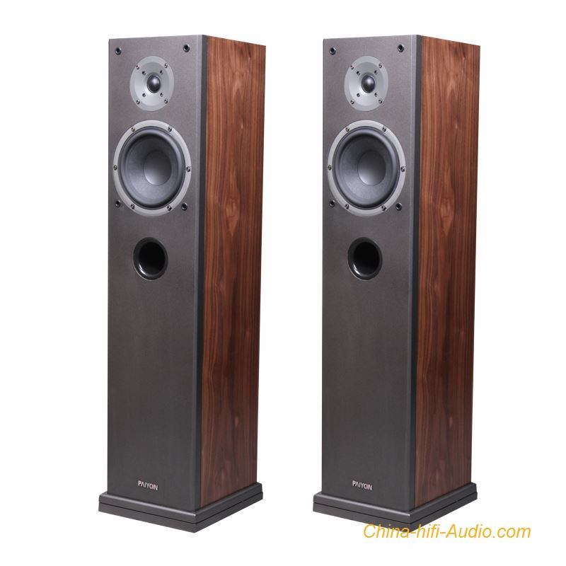 PAIYON P4F floor standing speakers 2.0 vifa speakers audiophile home theater