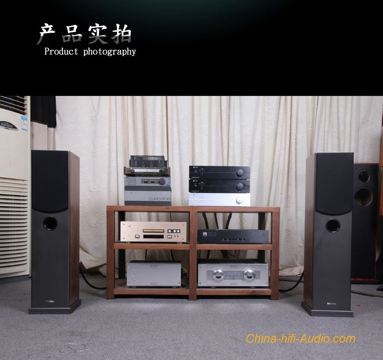 PAIYON P4F floor standing speakers 2 0 vifa speakers audiophile home