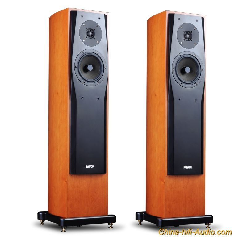 PAIYON P728 hi-end floor standing speakers hifi speaker stands home theater ETON