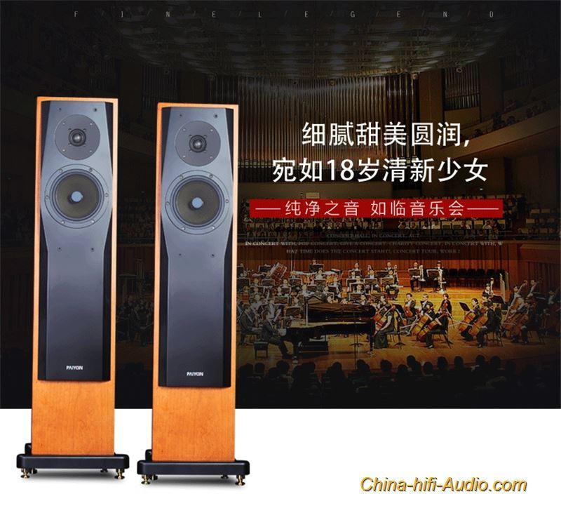 Paiyon P728 Hi End Floor Standing Speakers Hifi Speaker