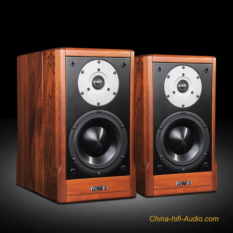 PAIYON P9 HIFI bookshelf speakers audiophile MOREL TICW 638+ ST1108 unit