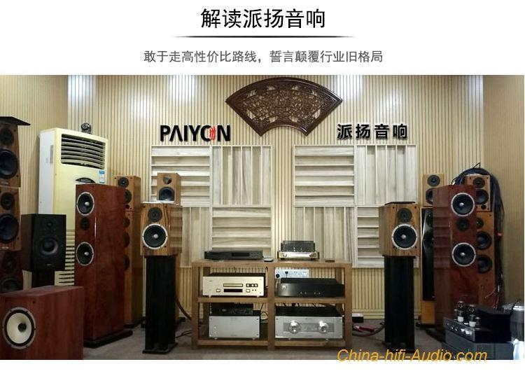 PAIYON P9 HIFI bookshelf speakers audiophile MOREL TICW 638+
