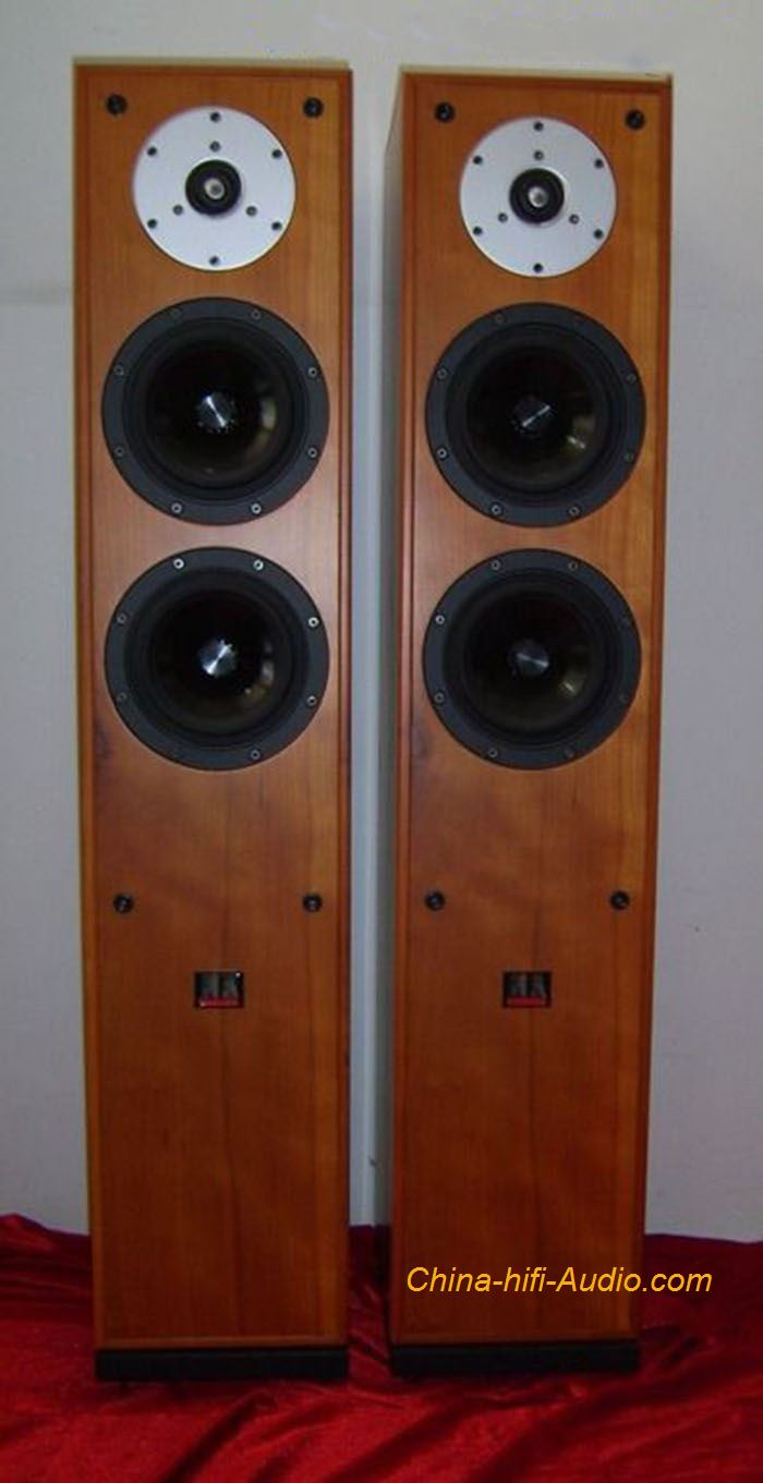 Master The Nightingale Floor standing speakers Loudspeaker pair for HI-FI audio