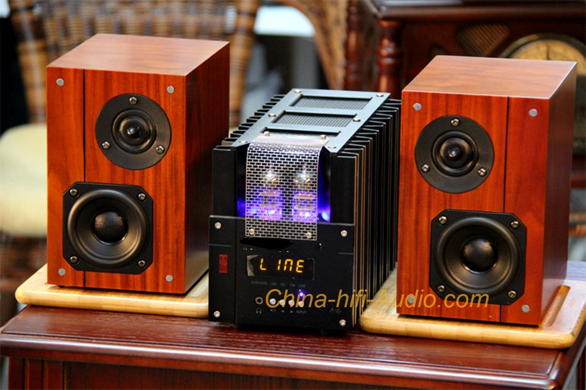 Best Match! QINPU A-6 intergrated AMP + VF-3.5 speakers