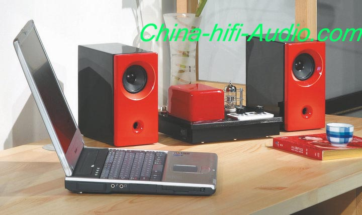 Best Match! QINPU Q2 intergrated amplifier + MG-2 hifi speakers